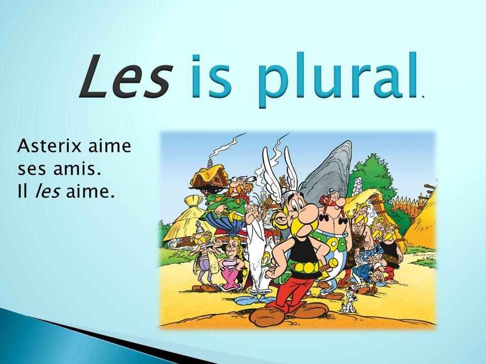 Asterix aime ses amis. Il les aime.