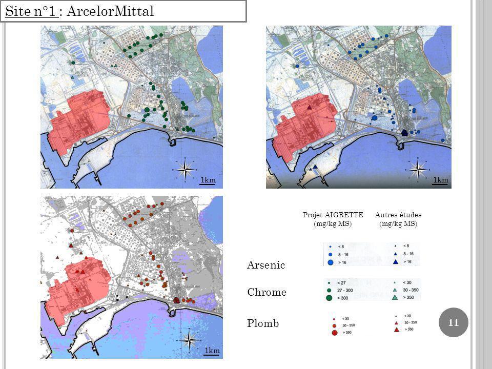 11 Site n°1 : ArcelorMittal Projet AIGRETTE (mg/kg MS) Autres études (mg/kg MS) Arsenic Chrome Plomb 1km