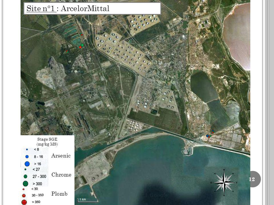 12 Site n°1 : ArcelorMittal Arsenic Chrome Plomb Stage SGE (mg/kg MS)
