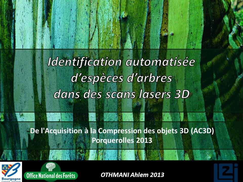 OTHMANI Ahlem 2013 De l'Acquisition à la Compression des objets 3D (AC3D) Porquerolles 2013