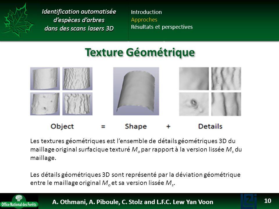 OTHMANI Ahlem 2013 Identification automatisée despèces darbres dans des scans lasers 3D Les textures géométriques est lensemble de détails géométrique