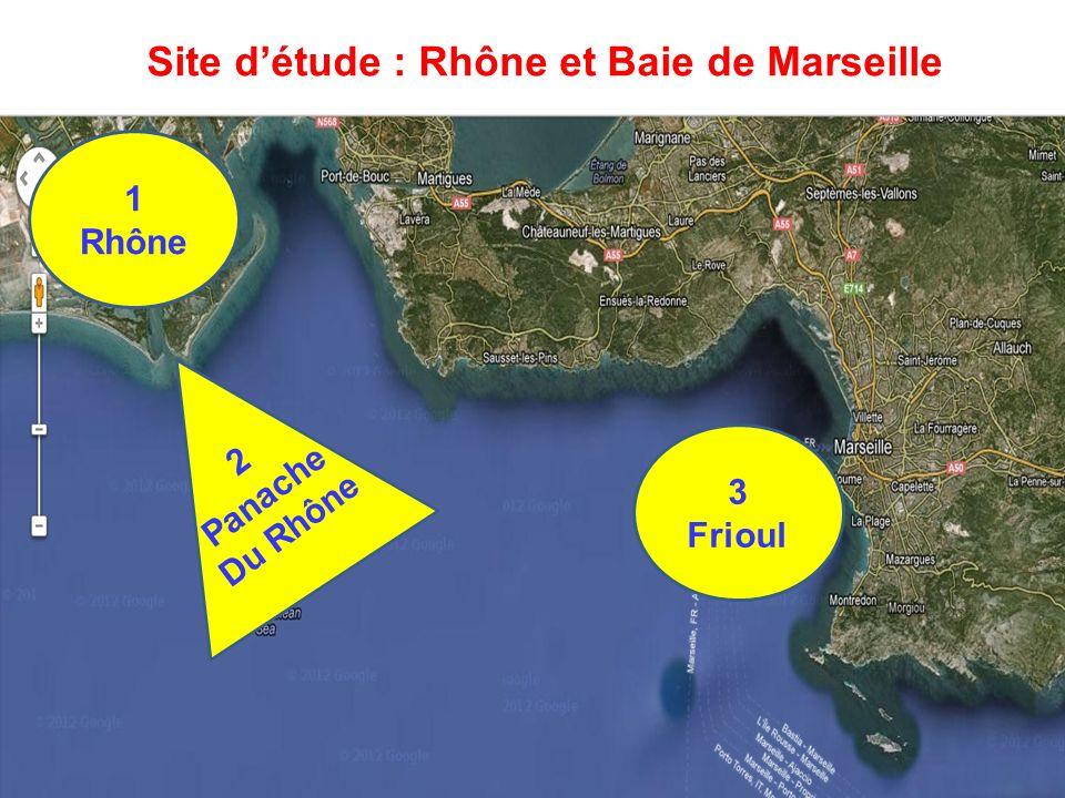 Site détude : Rhône et Baie de Marseille 1 Rhône 2 Panache Du Rhône 3 Frioul