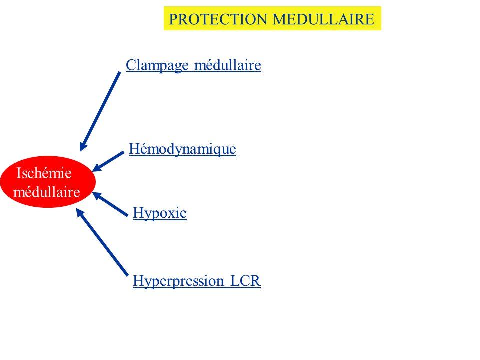 Ischémie médullaire Clampage médullaire Hémodynamique Hyperpression LCR Hypoxie PROTECTION MEDULLAIRE