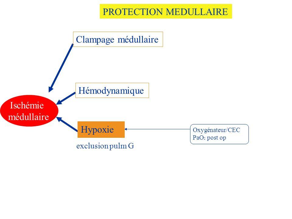 Oxygénateur/CEC PaO 2 post op Ischémie médullaire Clampage médullaire Hémodynamique Hypoxie PROTECTION MEDULLAIRE exclusion pulm G