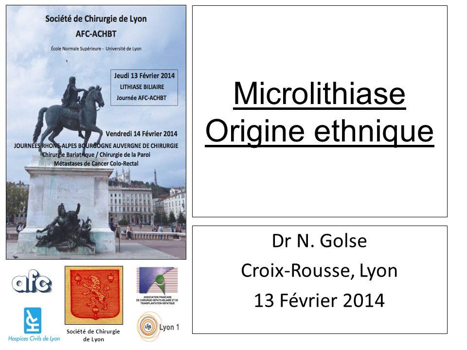 Société de Chirurgie de Lyon Microlithiase Origine ethnique Dr N. Golse Croix-Rousse, Lyon 13 Février 2014