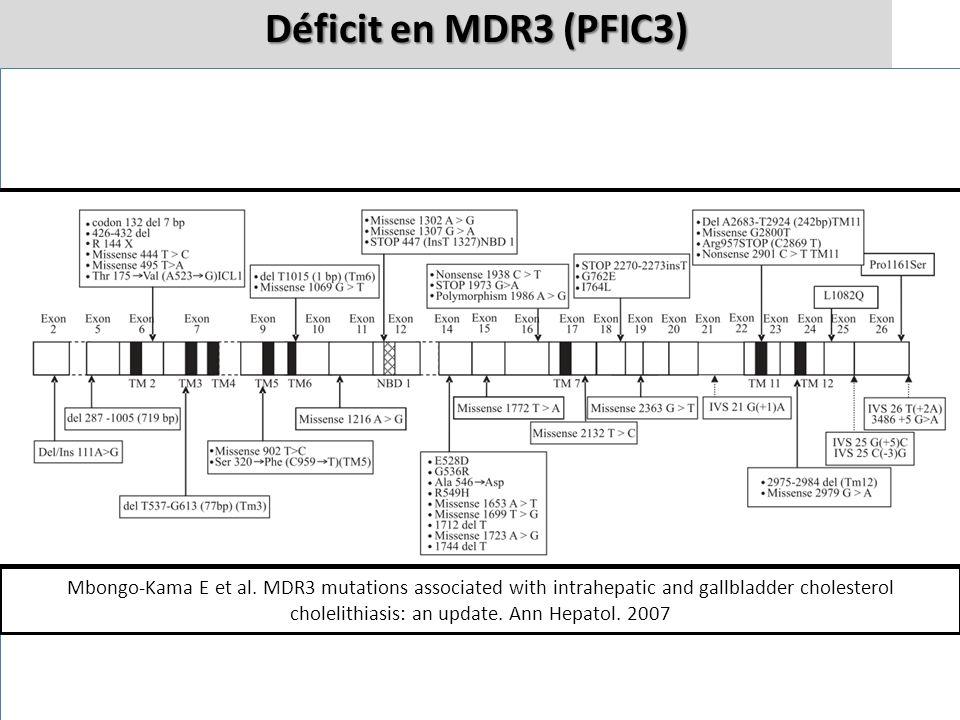 AB PCPCPCPC Micelles normales MDR3 normal MDR3 muté ABPC Micelles simples détergentes Cholangiocytes AB/PC AB/PC Hépatocyte MDR3 Déficit en MDR3 (PFIC