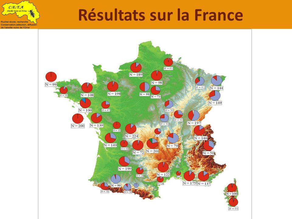 Résultats sur la France
