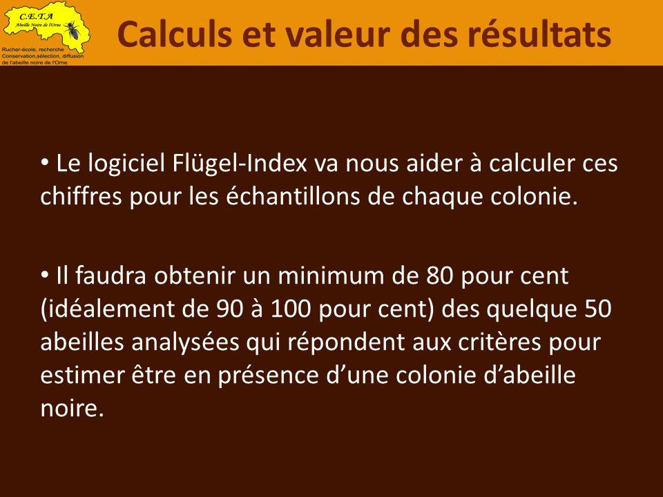 Le logiciel Flügel-Index va nous aider à calculer ces chiffres pour les échantillons de chaque colonie. Il faudra obtenir un minimum de 80 pour cent (