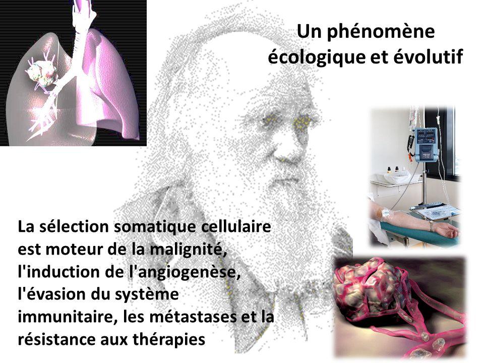Un phénomène écologique et évolutif La sélection somatique cellulaire est moteur de la malignité, l'induction de l'angiogenèse, l'évasion du système i
