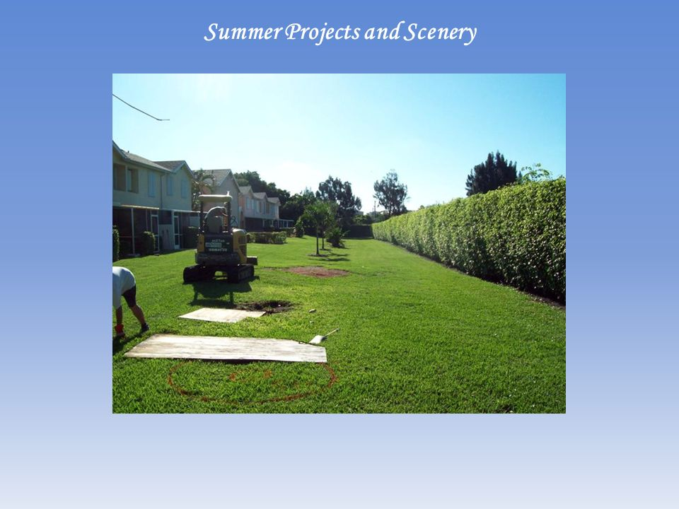Summer Projects and Scenery