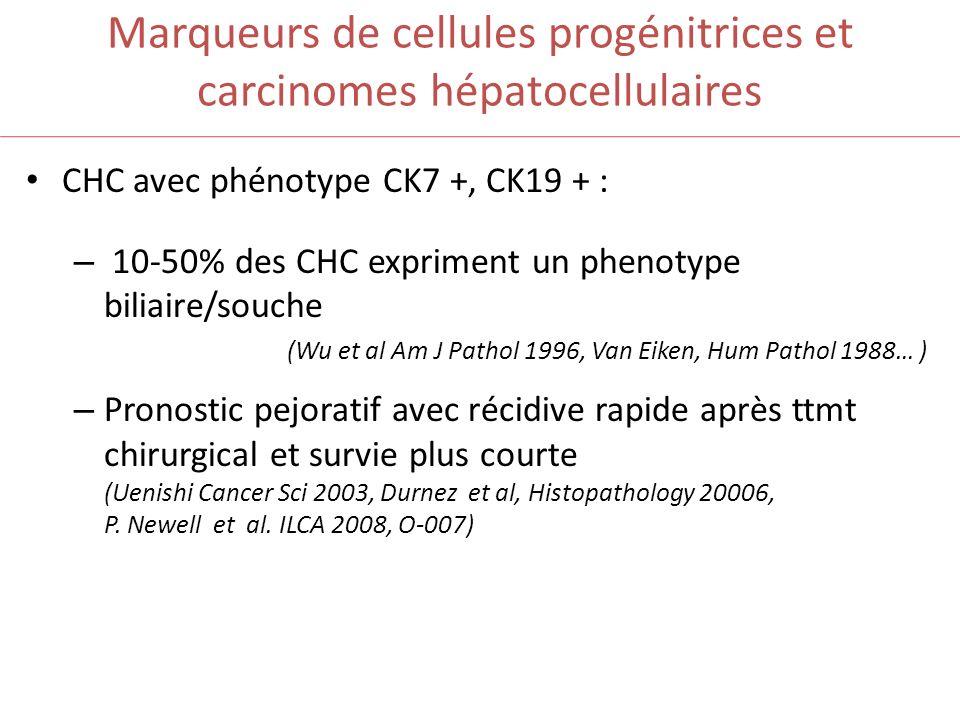Marqueurs de cellules progénitrices et carcinomes hépatocellulaires CHC avec phénotype CK7 +, CK19 + : – 10-50% des CHC expriment un phenotype biliair