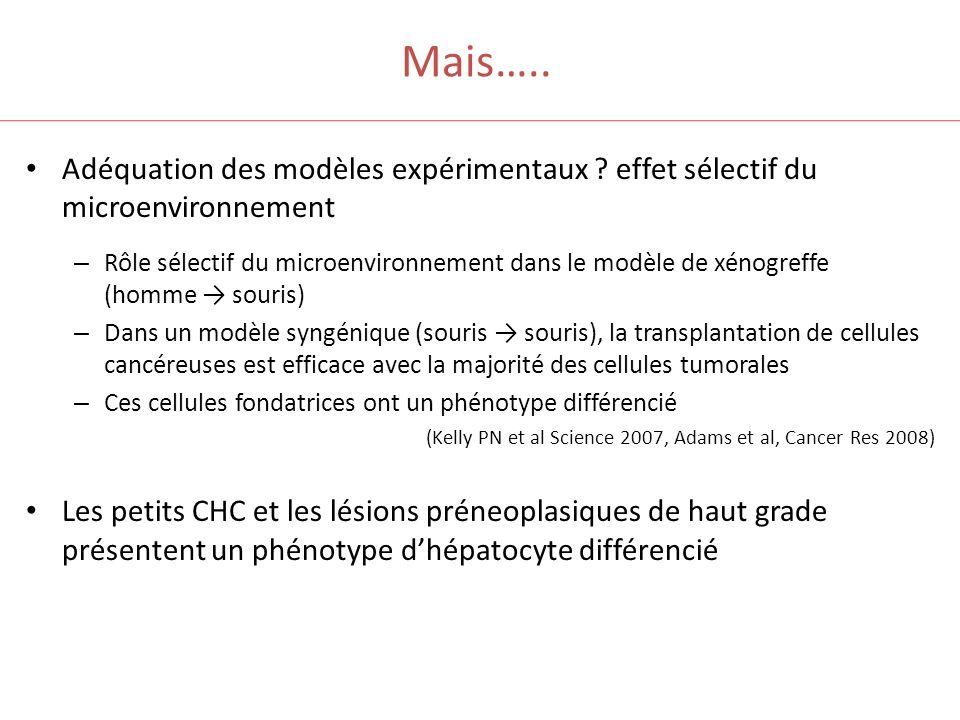 Mais….. Adéquation des modèles expérimentaux ? effet sélectif du microenvironnement – Rôle sélectif du microenvironnement dans le modèle de xénogreffe