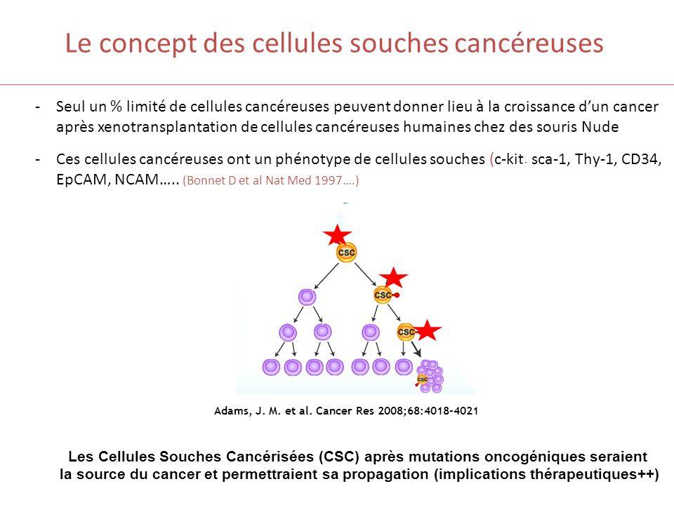 Le concept des cellules souches cancéreuses -Seul un % limité de cellules cancéreuses peuvent donner lieu à la croissance dun cancer après xenotranspl