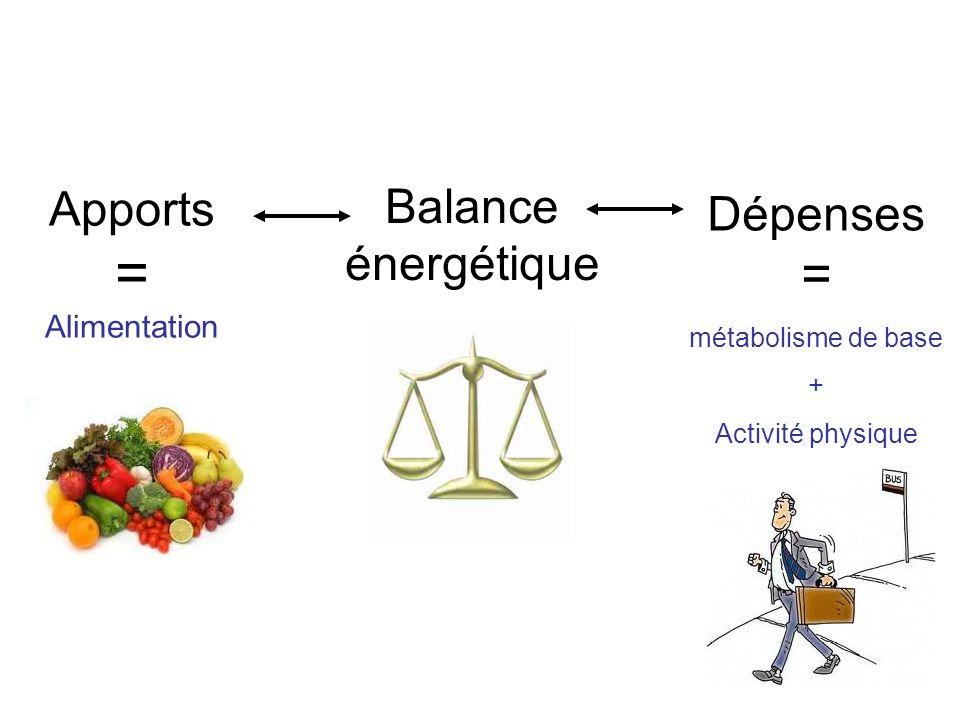 Apports = Alimentation Dépenses = métabolisme de base + Activité physique Balance énergétique