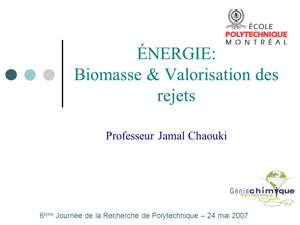 ÉNERGIE: Biomasse & Valorisation des rejets Professeur Jamal Chaouki 6 ème Journée de la Recherche de Polytechnique – 24 mai 2007