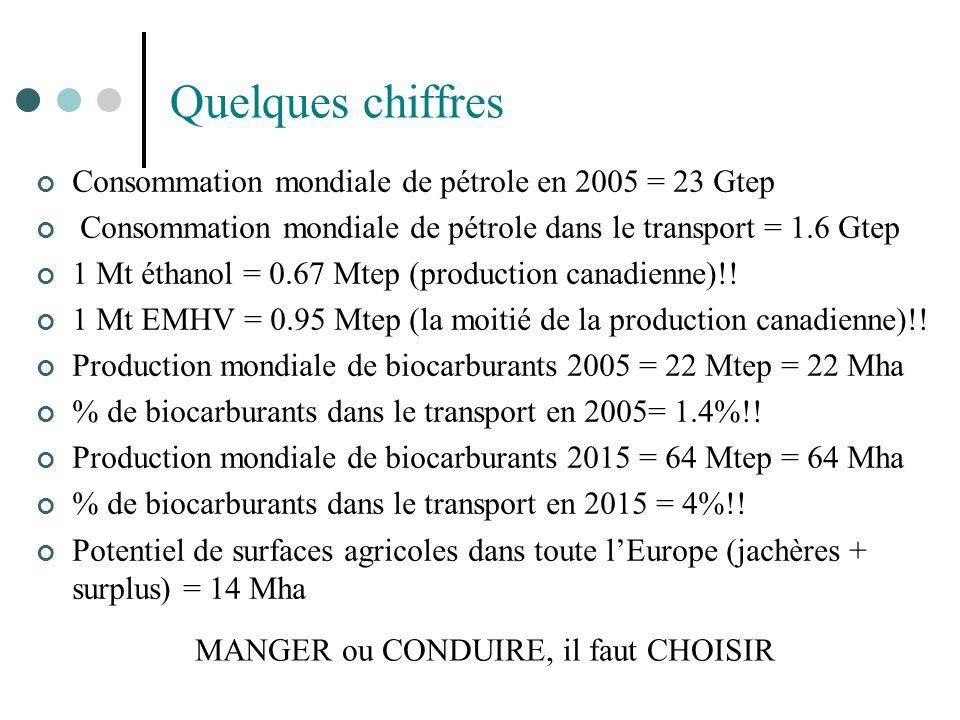 Quelques chiffres Consommation mondiale de pétrole en 2005 = 23 Gtep Consommation mondiale de pétrole dans le transport = 1.6 Gtep 1 Mt éthanol = 0.67