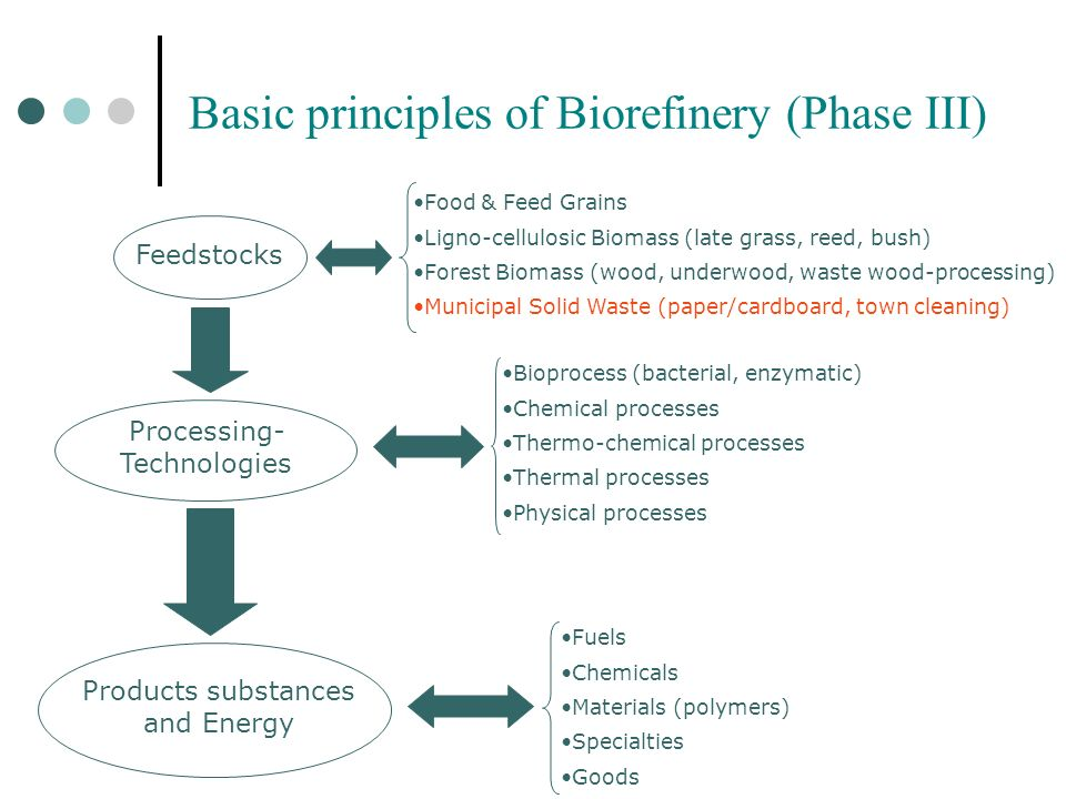 Basic principles of Biorefinery (Phase III) Feedstocks Processing- Technologies Products substances and Energy Food & Feed Grains Ligno-cellulosic Bio