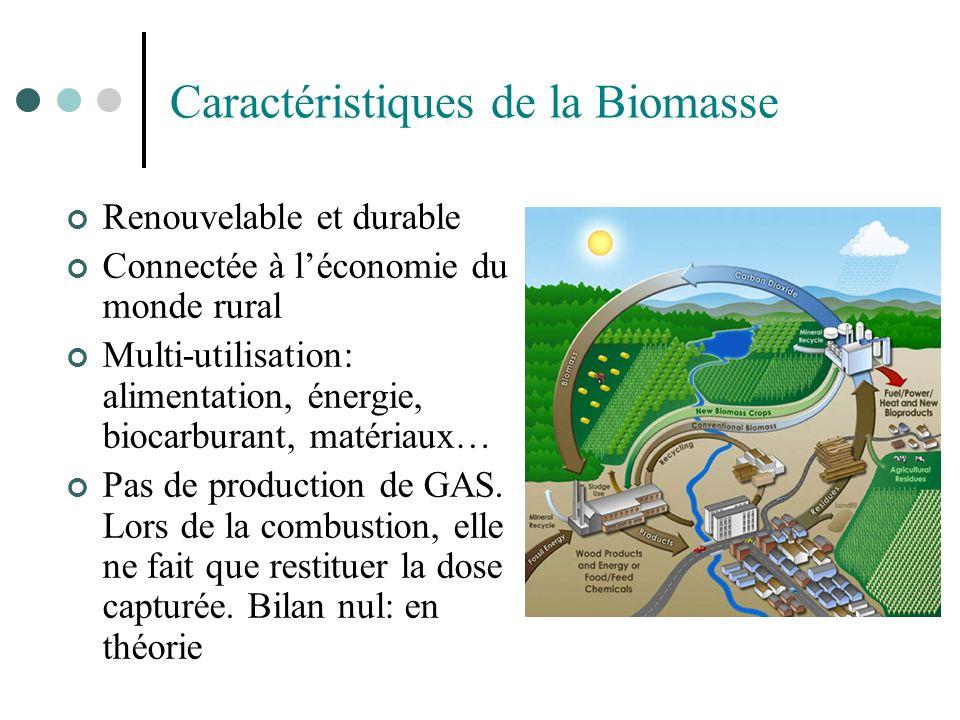 Caractéristiques de la Biomasse Renouvelable et durable Connectée à léconomie du monde rural Multi-utilisation: alimentation, énergie, biocarburant, m