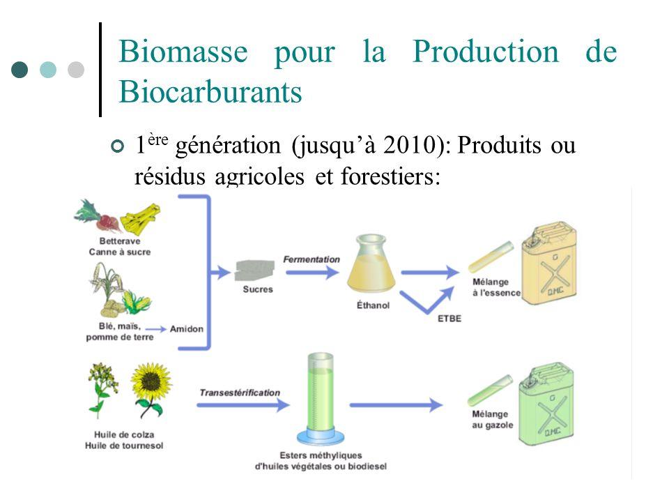 Biomasse pour la Production de Biocarburants 1 ère génération (jusquà 2010): Produits ou résidus agricoles et forestiers: