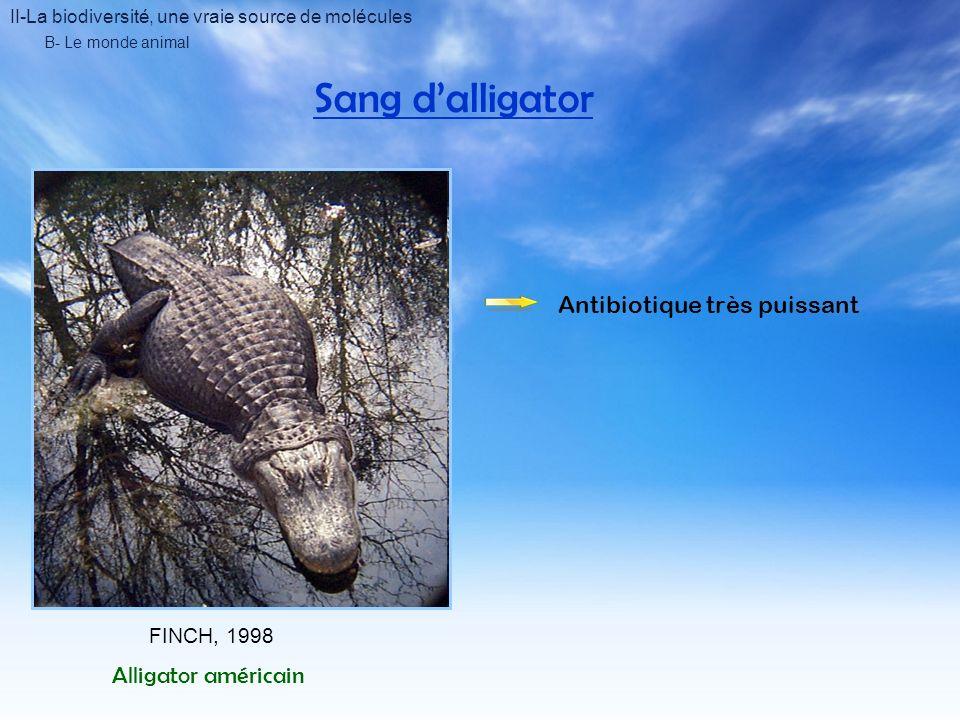 II-La biodiversité, une vraie source de molécules B- Le monde animal Sang dalligator FINCH, 1998 Alligator américain Antibiotique très puissant