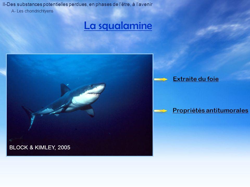 A- Les chondrichtyens La squalamine BLOCK & KIMLEY, 2005 Extraite du foie Propriétés antitumorales II-Des substances potentielles perdues, en phases de lêtre, à lavenir