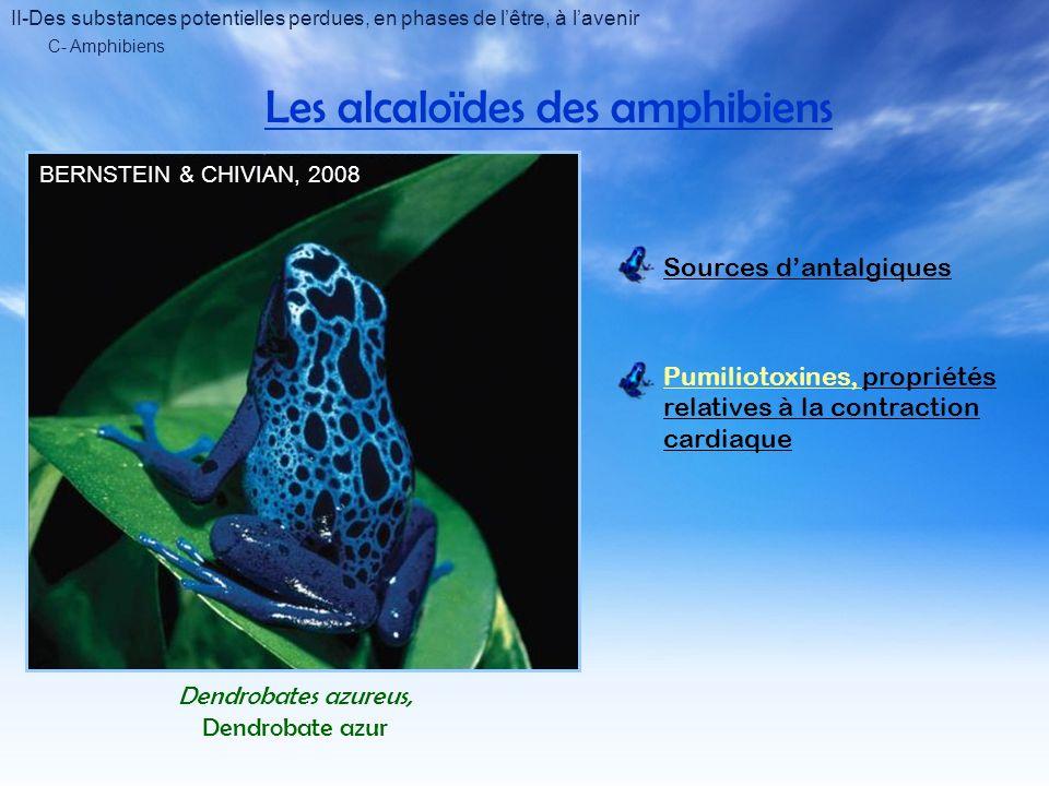 C- Amphibiens Les alcaloïdes des amphibiens BERNSTEIN & CHIVIAN, 2008 Dendrobates azureus, Dendrobate azur Sources dantalgiques Pumiliotoxines, propriétés relatives à la contraction cardiaque II-Des substances potentielles perdues, en phases de lêtre, à lavenir