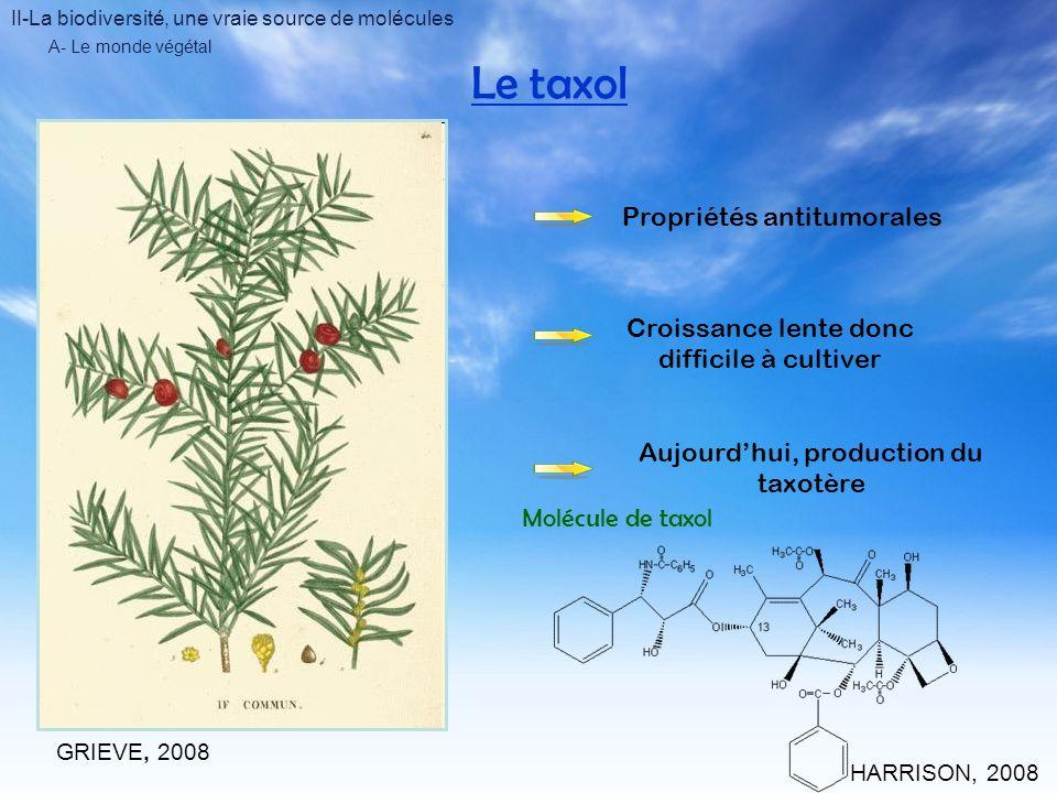 II-La biodiversité, une vraie source de molécules A- Le monde végétal Laspirine Propriétés antalgiques THERAMPANTGARDENER, 2008 UNION DES INDUSTRIES CHIMIQUES, 2007 ACADEMIE DE BESANCON, 2003 AXEL& LINDMAN, 2006 Propriétés anti-inflammatoires Propriétés anticoagulantes Propriétés antitumorales Diminution des chances de congestions cérébrales