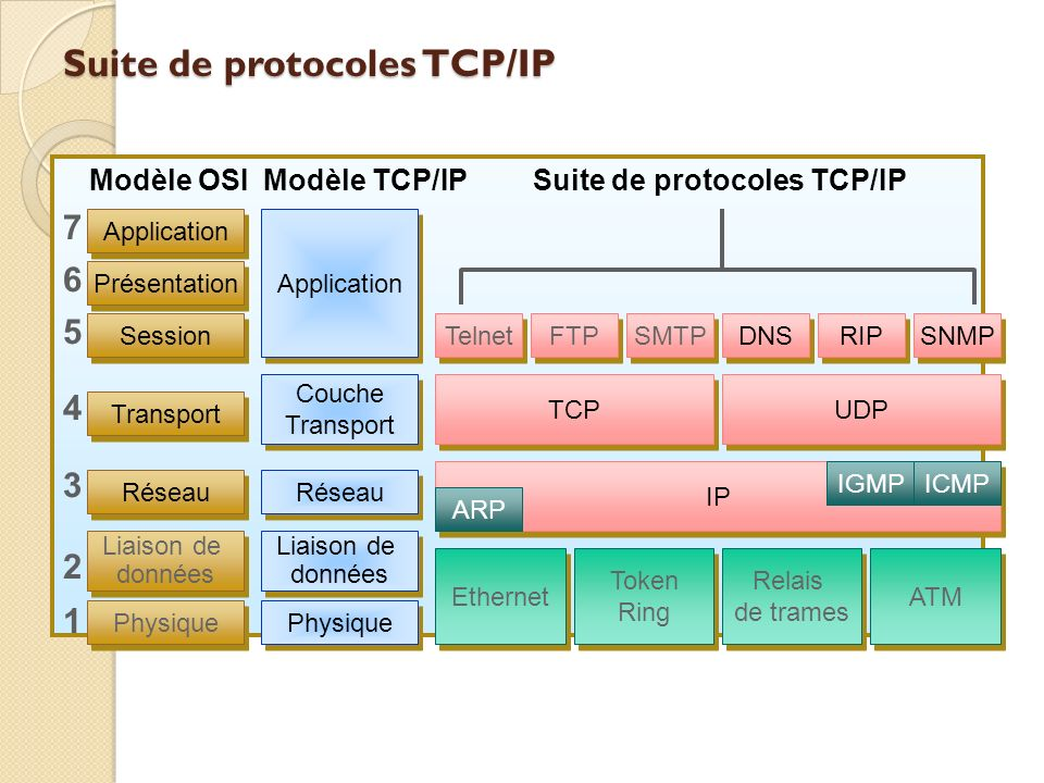 Suite de protocoles TCP/IP Modèle OSIModèle TCP/IPSuite de protocoles TCP/IP 76543217654321 Application Couche Transport Application Présentation Sess