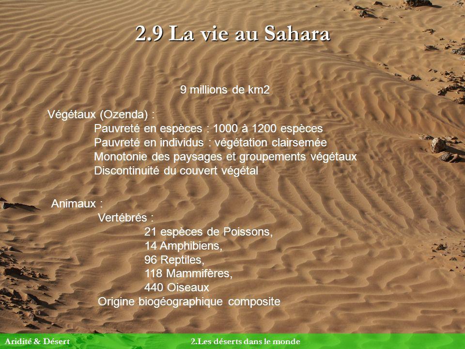2.9 La vie au Sahara Végétaux (Ozenda) : Pauvreté en espèces : 1000 à 1200 espèces Pauvreté en individus : végétation clairsemée Monotonie des paysage