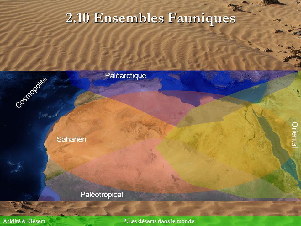 2.10 Ensembles Fauniques Paléarctique Paléotropical Oriental Saharien Cosmopolite Aridité & Désert2.Les déserts dans le monde