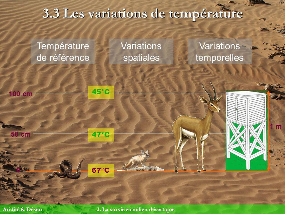 3.3 Les variations de température Température de référence Aridité & Désert 3. La survie en milieu désertique 1 m 0 50 cm 100 cm 45°C 57°C 47°C Variat