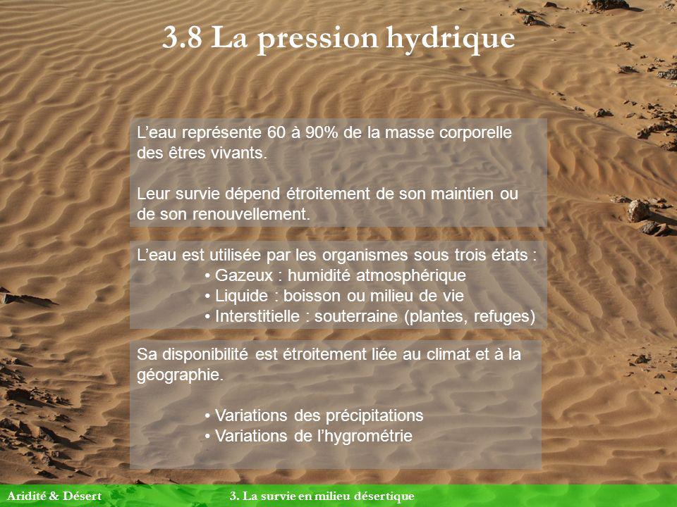 3.8 La pression hydrique Leau représente 60 à 90% de la masse corporelle des êtres vivants. Leur survie dépend étroitement de son maintien ou de son r