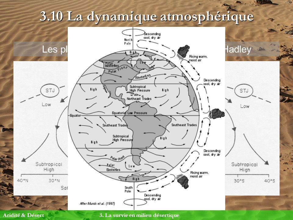 3.10 La dynamique atmosphérique Aridité & Désert 3. La survie en milieu désertique Les pluies sahariennes et les Cellules de Hadley