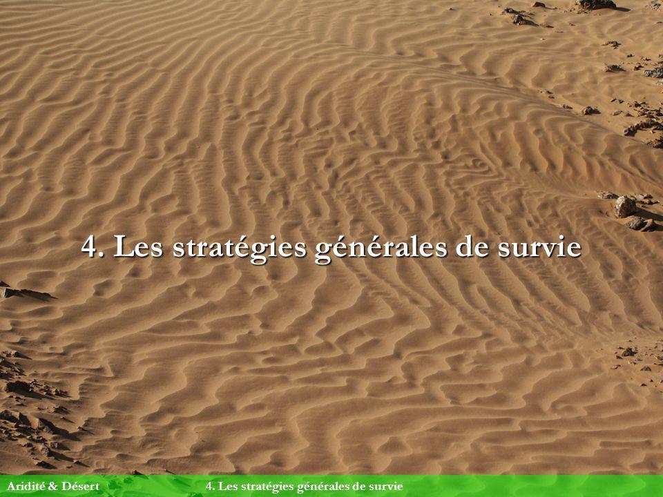 4. Les stratégies générales de survie Aridité & Désert4. Les stratégies générales de survie