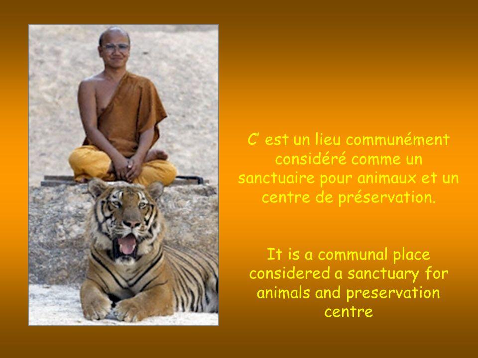 C est un lieu communément considéré comme un sanctuaire pour animaux et un centre de préservation.