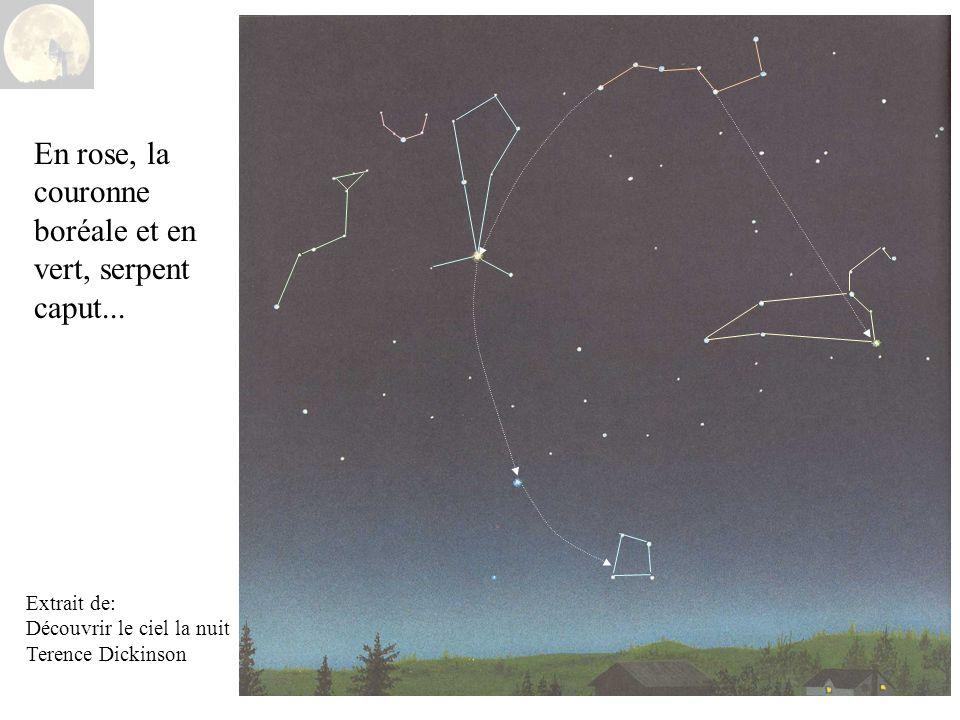 Extrait de: Découvrir le ciel la nuit Terence Dickinson En rose, la couronne boréale et en vert, serpent caput...