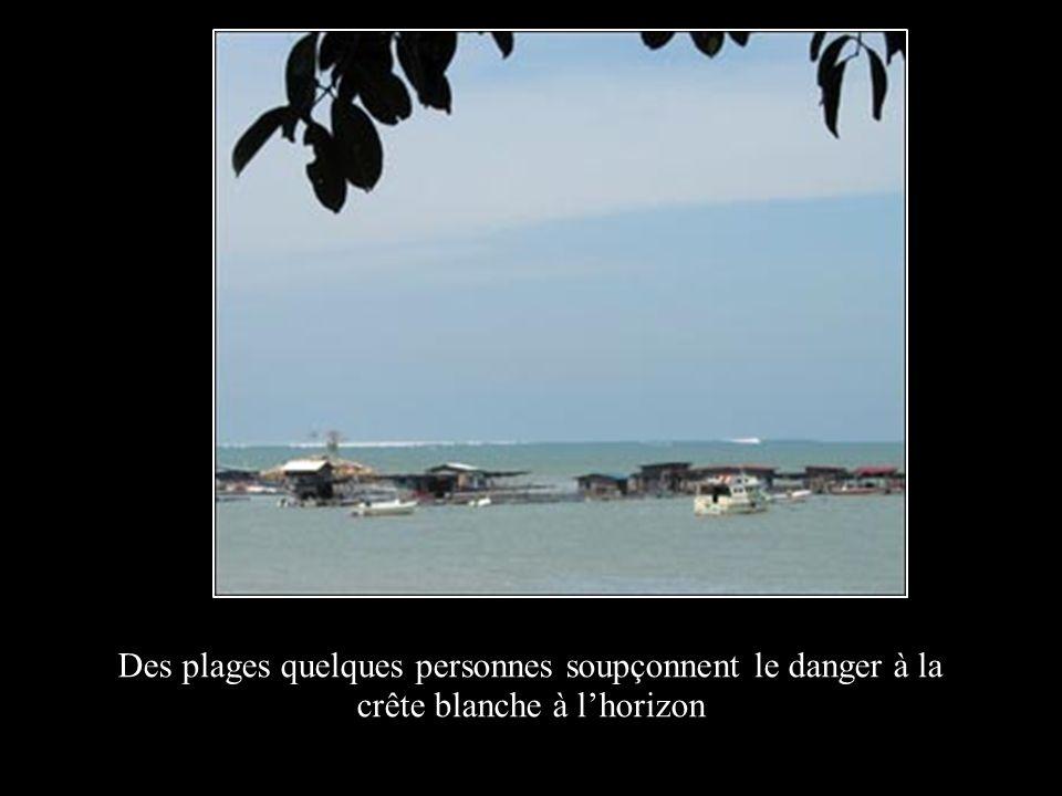 Des plages quelques personnes soupçonnent le danger à la crête blanche à lhorizon