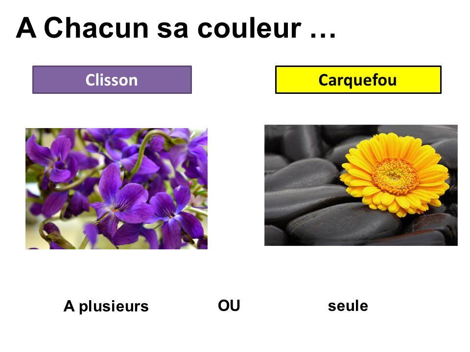 A Chacun sa couleur … ClissonCarquefou OU A plusieurs seule