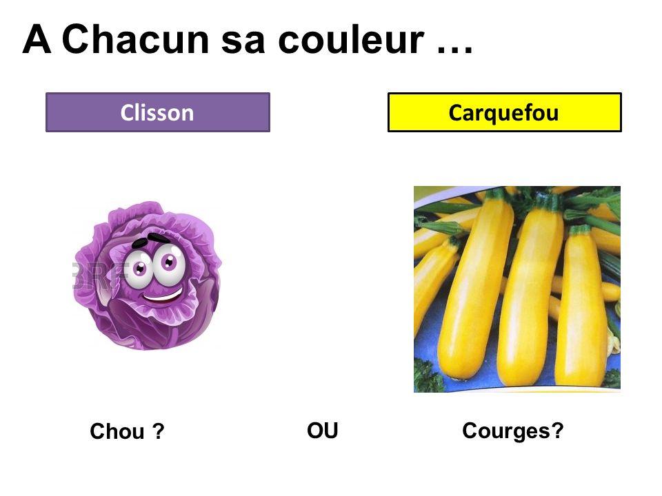 A Chacun sa couleur … ClissonCarquefou OU Chou ? Courges?