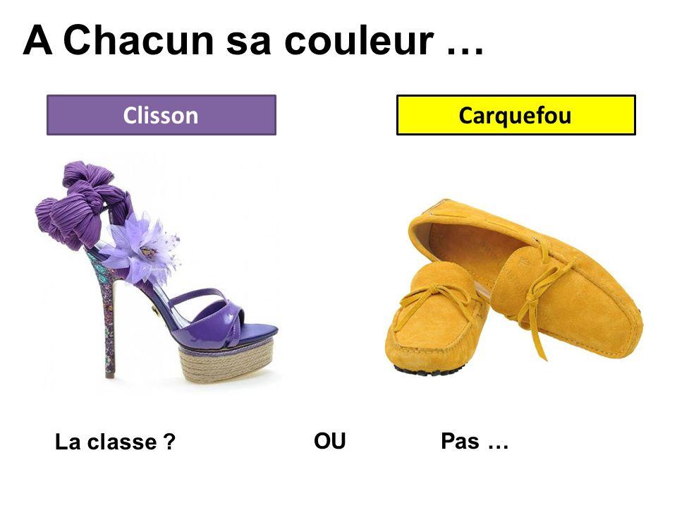 A Chacun sa couleur … ClissonCarquefou OU La classe ? Pas …