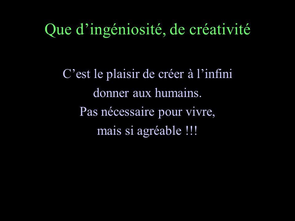 Que dingéniosité, de créativité Cest le plaisir de créer à linfini donner aux humains.