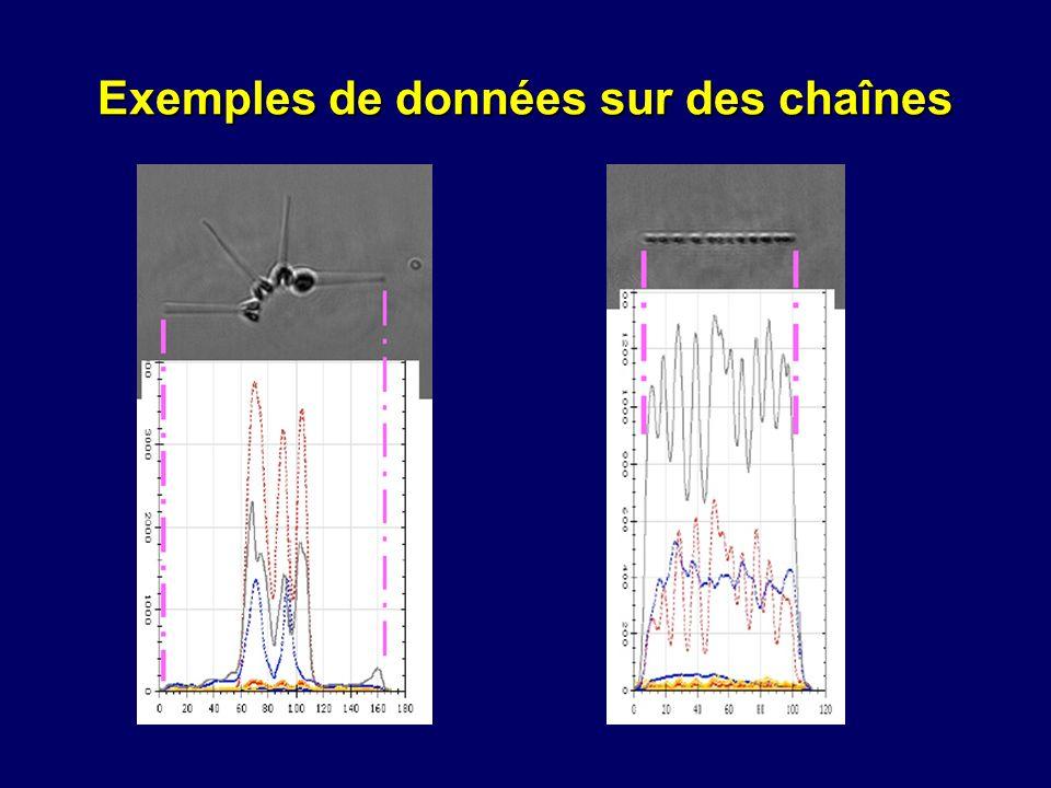 Exemples de données sur des chaînes