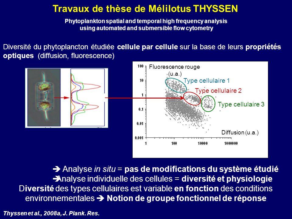 Travaux de thèse de Mélilotus THYSSEN Diversité du phytoplancton étudiée cellule par cellule sur la base de leurs propriétés optiques (diffusion, fluo