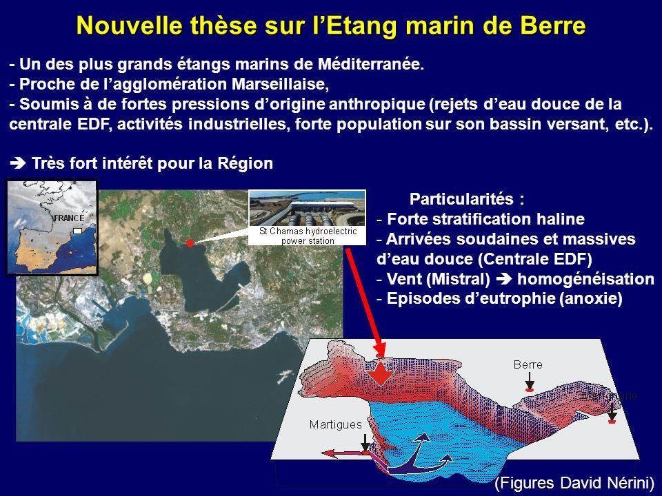 Nouvelle thèse sur lEtang marin de Berre (Figures David Nérini) Particularités : - Forte stratification haline - Arrivées soudaines et massives deau d