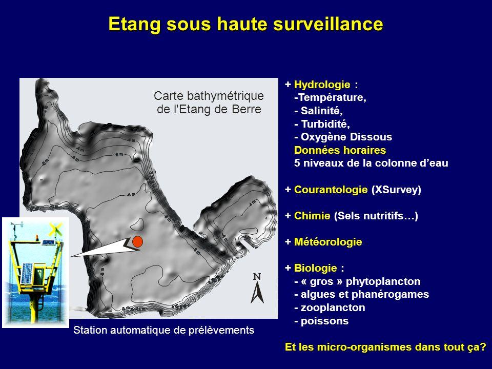 Etang sous haute surveillance + Hydrologie : -Température, - Salinité, - Turbidité, - Oxygène Dissous Données horaires Données horaires 5 niveaux de l