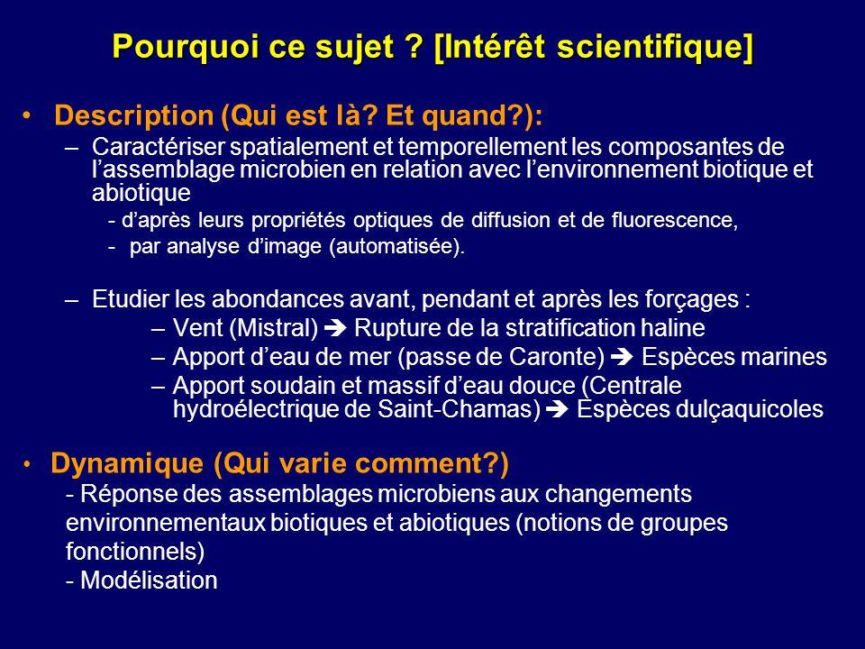 Description (Qui est là? Et quand?): –Caractériser spatialement et temporellement les composantes de lassemblage microbien en relation avec lenvironne