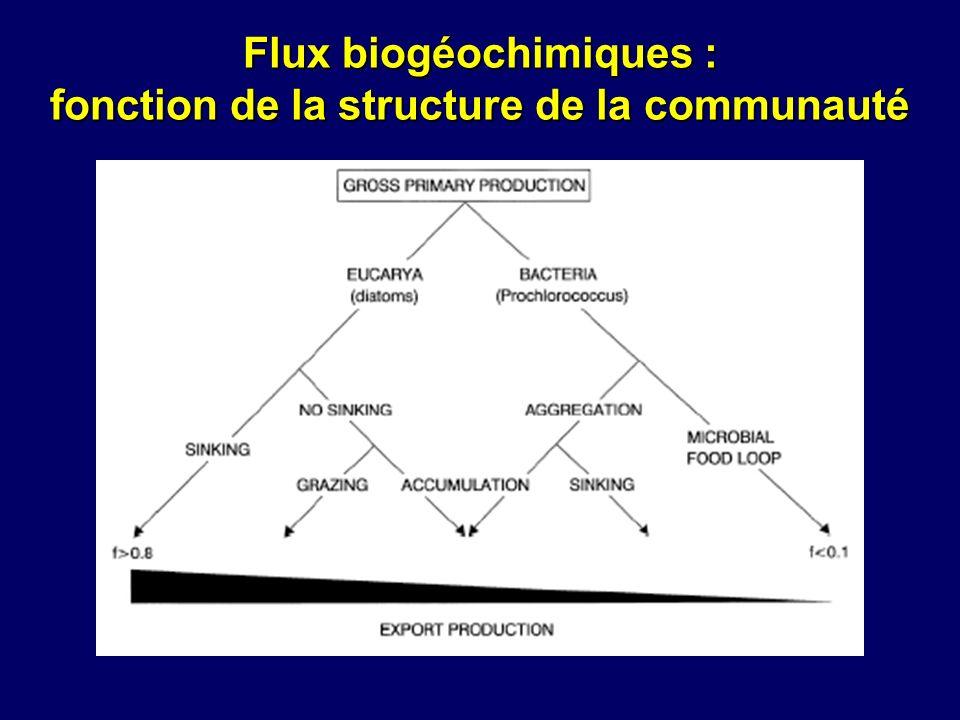 Prise de conscience du rôle des microorganismes www.soes.soton.ac.uk www.jochemnet.de