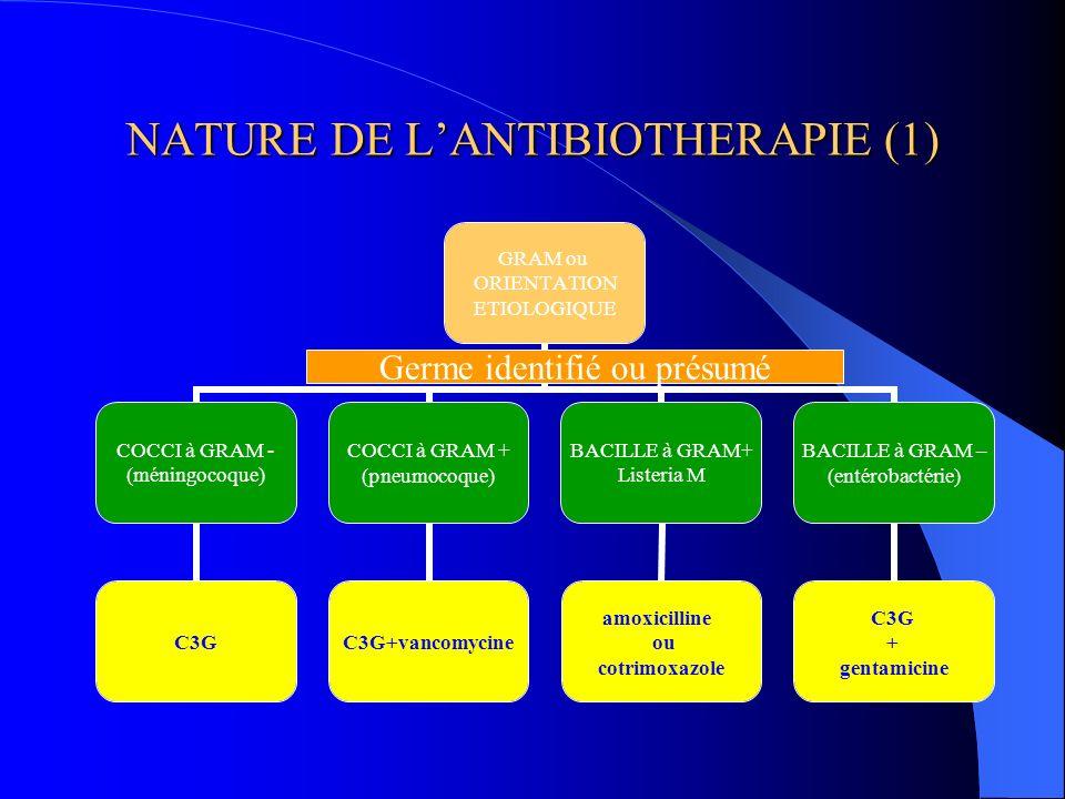NATURE DE LANTIBIOTHERAPIE (1) GRAM ou ORIENTATION ETIOLOGIQUE COCCI à GRAM - (méningocoque) C3G COCCI à GRAM + (pneumocoque) C3G+vancomycine BACILLE
