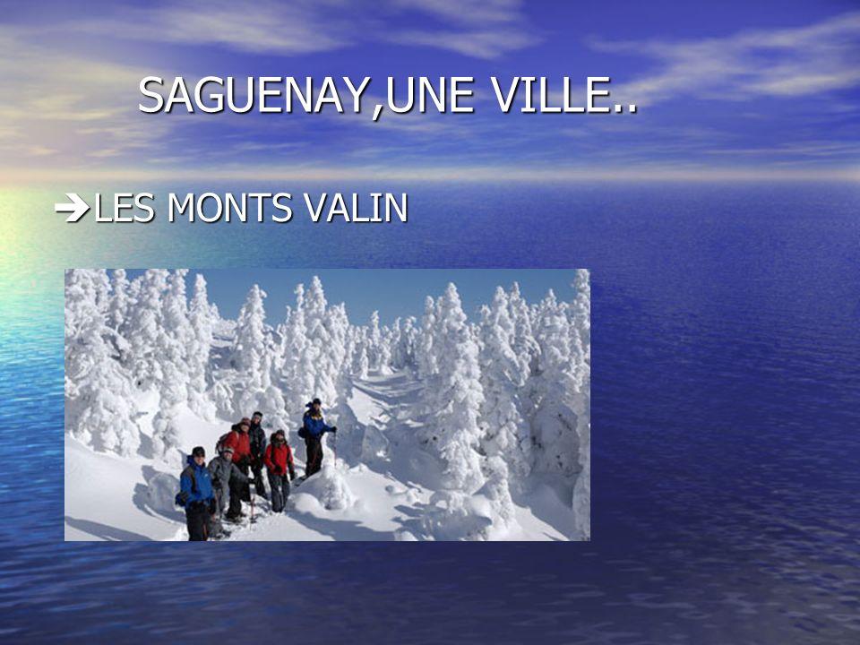 SAGUENAY Cest une région,composée de plusieurs municipalités situées tout au long des deux rives de la rivière Saguenay.
