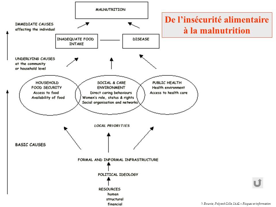 D. Bounie, Polytech'Lille, IAAL – Risques et information De linsécurité alimentaire à la malnutrition